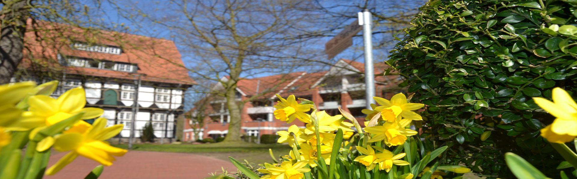 Frühling 1